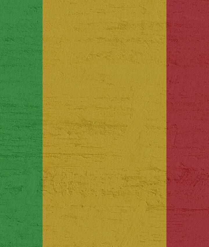 Il Mali ferito